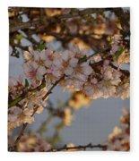 New Blossoms - Old Almond Tree Fleece Blanket