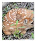 New Born Fawn Fleece Blanket