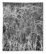 New Grasses Glacier National Park Bw Fleece Blanket