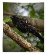 Red Winged Blackbird - New Heights - 06.04.2014 Fleece Blanket