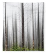 New Jersey Pine Barrens Fleece Blanket