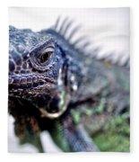 Close Up Beady Eyed Iguana Fleece Blanket