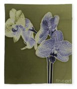 New Photographic Art Print For Sale Orchids 10 Fleece Blanket