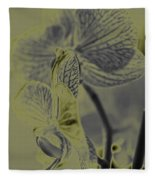 New Photographic Art Print For Sale Orchids 11 Fleece Blanket