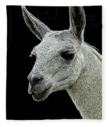 New Photographic Art Print For Sale   Portrait Of  Llama Against Black Fleece Blanket