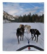 Riding Through The Colorado Snow On A Husky Pulled Sled Fleece Blanket