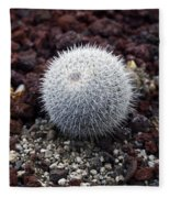 New Photographic Art Print For Sale White Ball Cactus Fleece Blanket