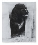 Newfoundland Puppy Fleece Blanket