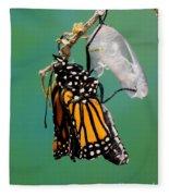 Newly-emerged Monarch Butterfly Fleece Blanket