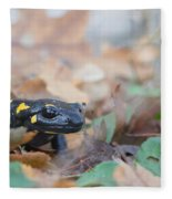 Nice Fire Salamander Fleece Blanket
