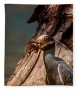 Night Heron And Crawdaddy Fleece Blanket