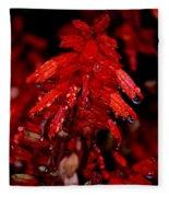 Night Of Glistening Red Salvia Fleece Blanket