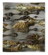 Nile Crocodiles Crocodylus Niloticus Fleece Blanket