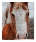 No Fences Fleece Blanket