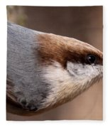No Hands - Fayetteville - Nuthatch Fleece Blanket