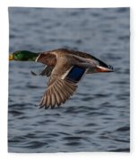 Mallard Flight Fleece Blanket