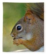 Nom Nom Squirrel  Fleece Blanket