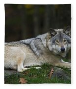 Nonchalant.. Fleece Blanket