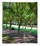 Norfolk Botanical Garden 3 Fleece Blanket