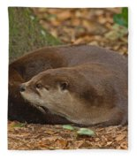 North American River Otter Fleece Blanket