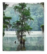 North Florida Cypress Swamp Fleece Blanket