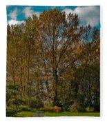 North Lions Park In Mount Vernon Washington Fleece Blanket