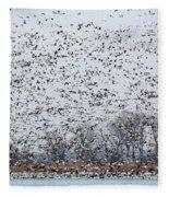 Northbound Fleece Blanket