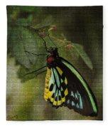 Northern Butterfly Fleece Blanket