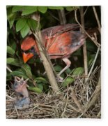 Northern Cardinal At Nest Fleece Blanket