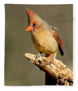 Northern Cardinal Cardinalis Cardinalis Fleece Blanket