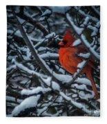 Northern Cardinal In Winter Fleece Blanket