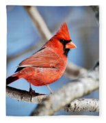 Northern Cardinal Scarlet Blaze Fleece Blanket