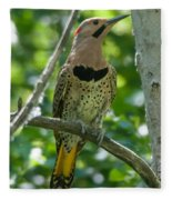 Northern Flicker Fleece Blanket