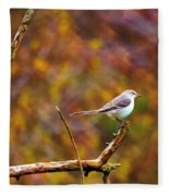 Northern Mockingbird Fleece Blanket