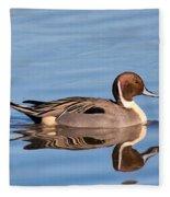 Northern Pintail Drake Fleece Blanket