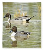 Northern Pintail Ducks  Fleece Blanket