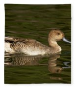 Northern Pintail Molting Fleece Blanket