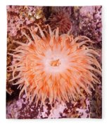 Northern Red Anemone Fleece Blanket