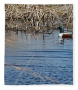 Northern Shoveler Swim Fleece Blanket