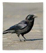 Northwestern Crow Fleece Blanket