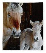 Norwegian Fjord Horse And Colt Digital Art Fleece Blanket
