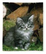 Norwegian Forest Kitten Fleece Blanket