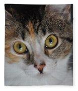 Nosey Lil Kitty Fleece Blanket