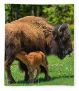 Nursing Newborn Fleece Blanket
