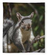 Nuts Please Fleece Blanket