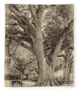 Oak Alley Backyard Seoia Fleece Blanket