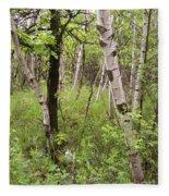 Oak And Birch Fleece Blanket