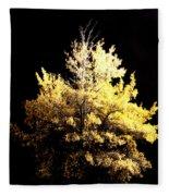 Oak At Night Fleece Blanket