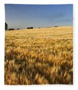 Oak At The Field Fleece Blanket