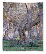 Oak Grove Fleece Blanket